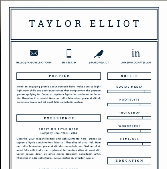 1 Page Resume Template Beautiful E Page Resume Template