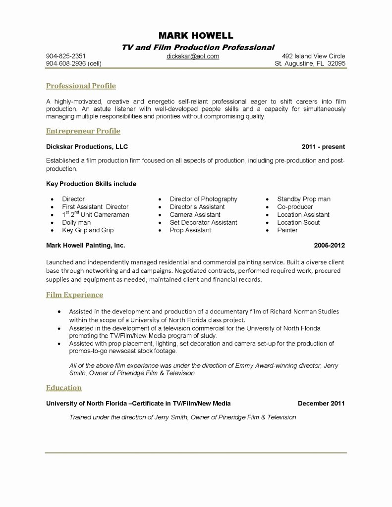 1 Page Resume Template Inspirational E Page Resume Template