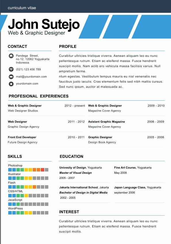 1 Page Resume Template Luxury E Page Resume Template