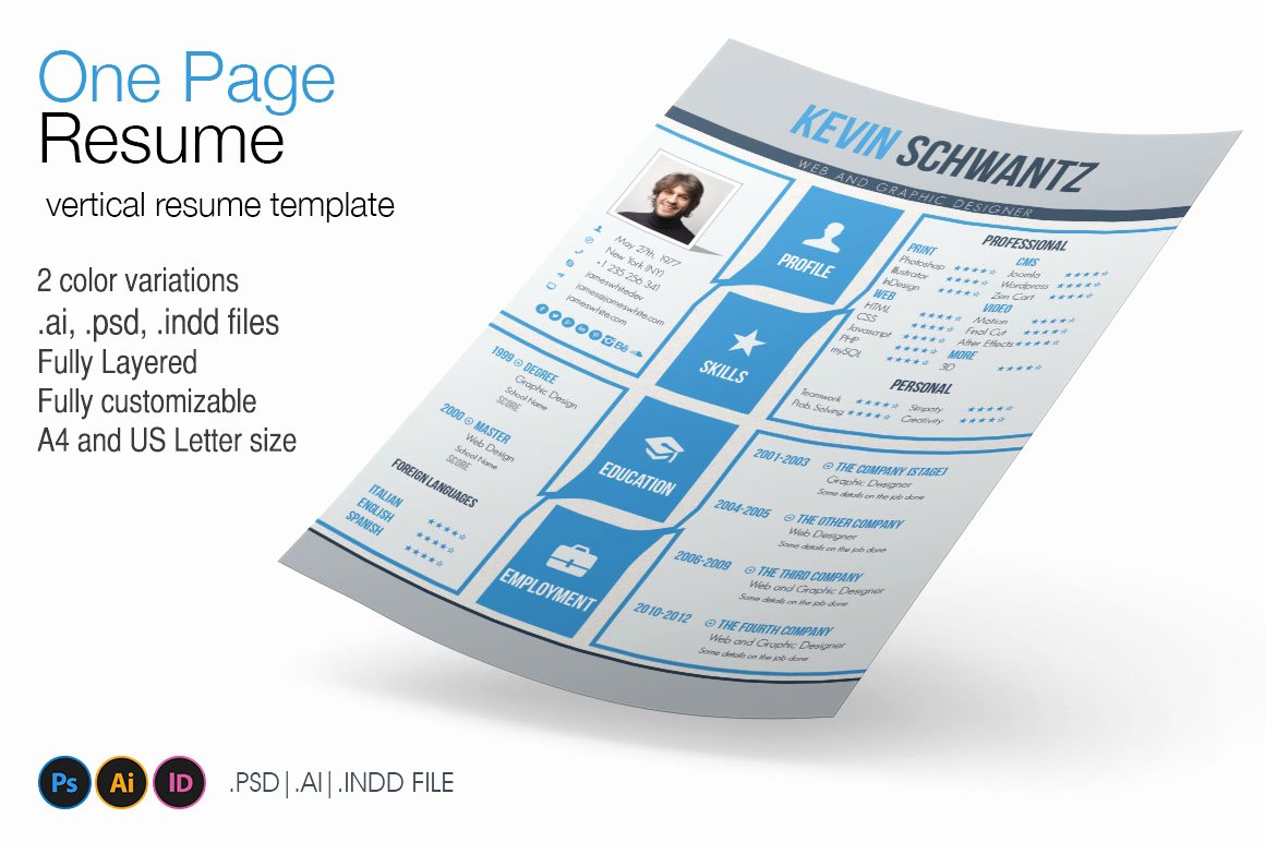1 Page Resume Template Unique E Page Resume Resume Templates On Creative Market