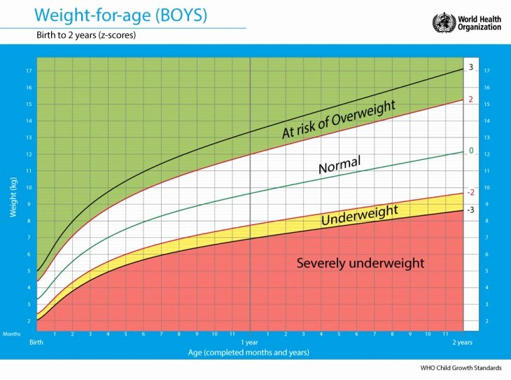 Age and Weight Chart Beautiful Keeping Baby Healthy