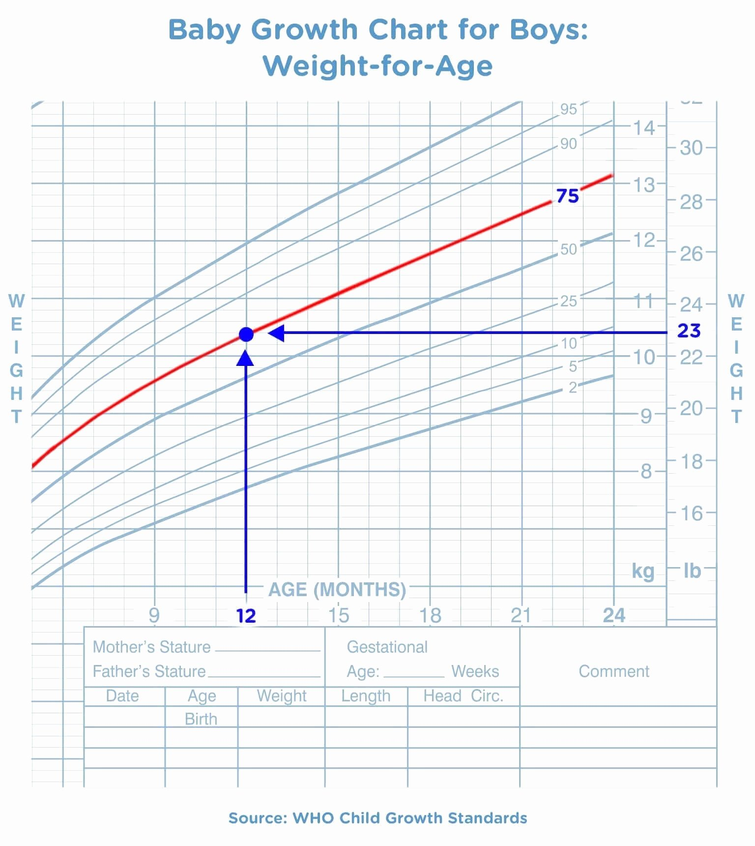 Age and Weight Chart Unique Baby Growth Chart the First 24 Months