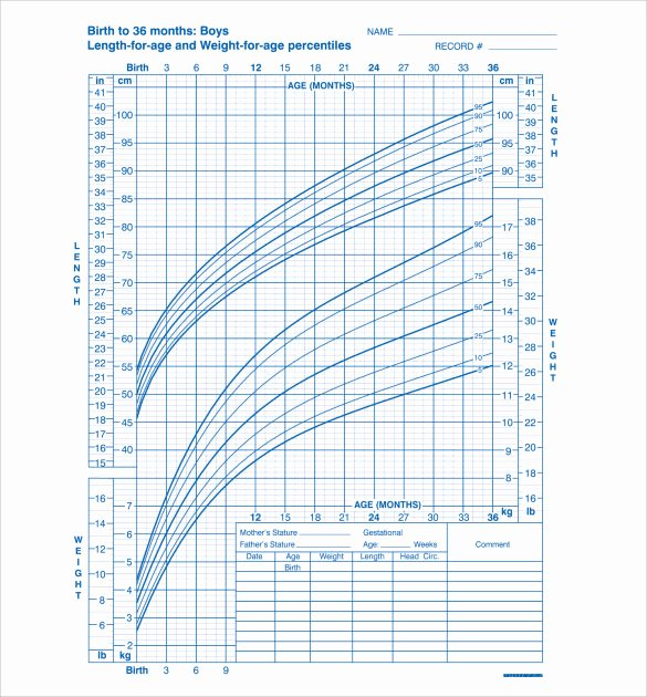 Average Baby Weight Chart Luxury Sample Baby Growth Chart 6 Free Documents In Pdf
