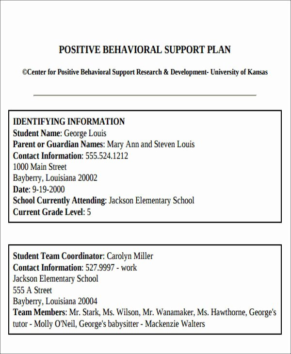 Behavior Intervention Plan Template Elegant Behavior Intervention Plan Example 6 Examples In Word Pdf