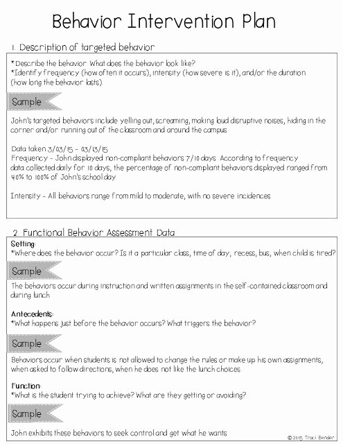 Behavior Intervention Plan Template Lovely the Bender Bunch Creating A Behavior Intervention Plan Bip