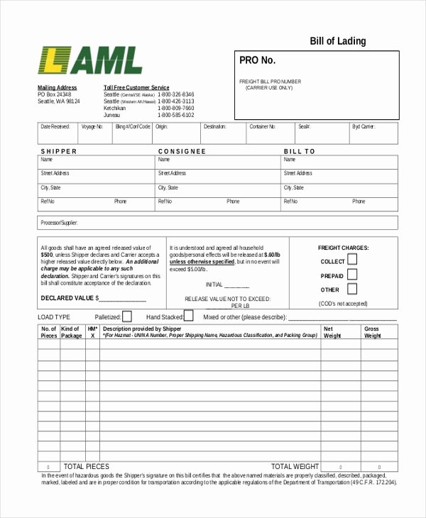 Bill Of Lading Sample Unique Free 13 Sample Bill Of Lading forms