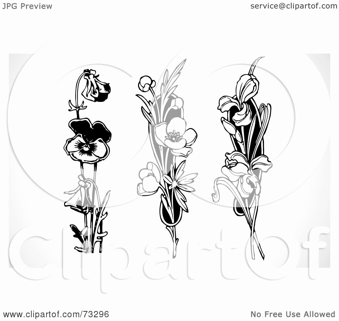 Black and White Illustration Awesome Royalty Free Rf Clipart Illustration Of A Digital