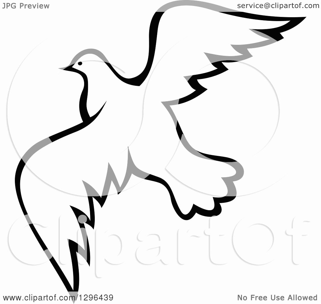Black and White Illustration Elegant Clipart Of A Black and White Flying Dove 10 Royalty Free