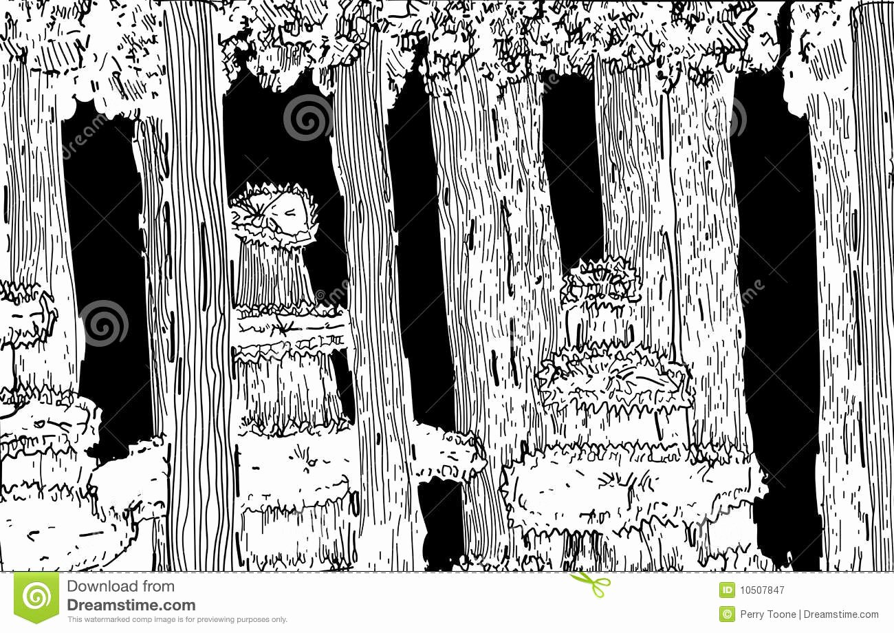 Black and White Illustration Inspirational forest Illustration Black and White Stock Vector Image