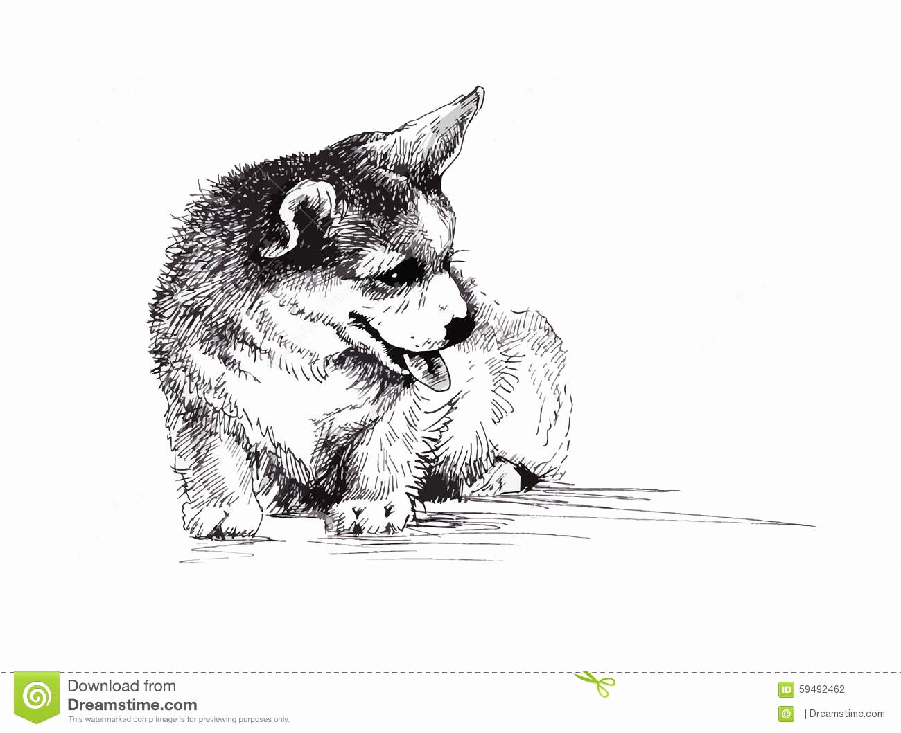 Black and White Illustration New Puppy Dog Hand Drawn Black and White Illustration Sketch
