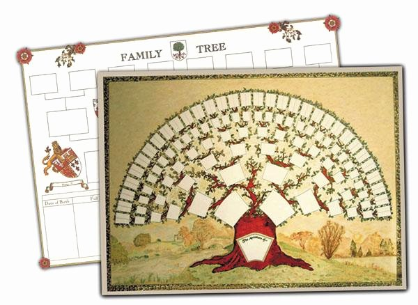 Blank Family Tree Chart Beautiful Genealogy and Family History Product Search S&n