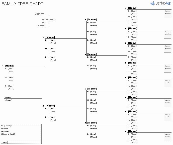 Blank Family Tree Chart Elegant Free Family Tree Template