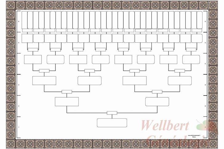 Blank Family Tree Chart Fresh Blank Family Tree Templates