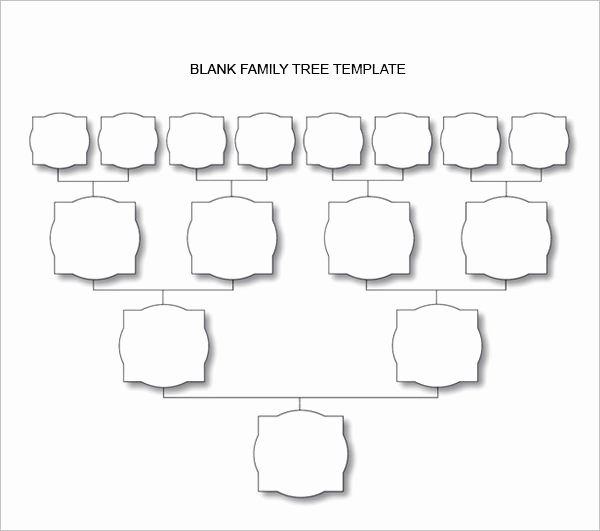 Blank Family Tree Chart Inspirational Blank Family Tree Chart 6 Free Excel Word Documents