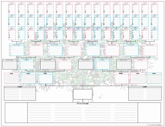 Blank Family Tree Chart Lovely 290 Best Genealogy Printables Images On Pinterest