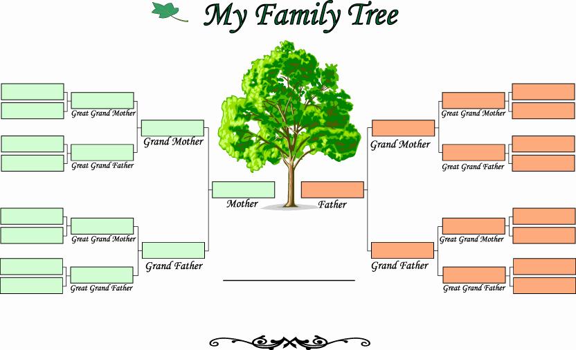 Blank Family Tree Chart Lovely Blank Family Tree Template