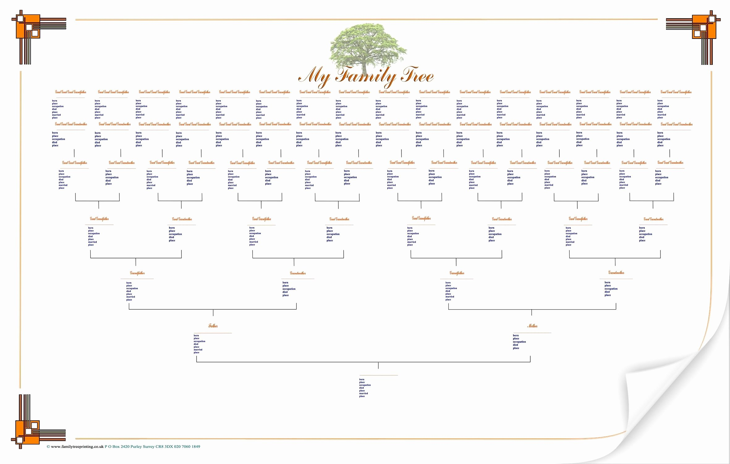 Blank Family Tree Template Beautiful Blank Family Tree Chart Geneology