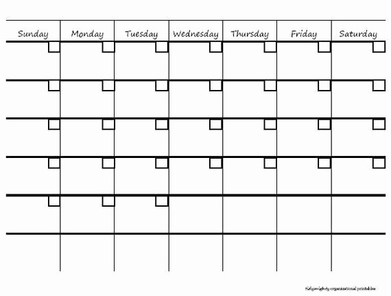 Blank Monthly Calendar Pdf Lovely Blank Monthly Calendar organizer Printable Pdf by Tidymighty