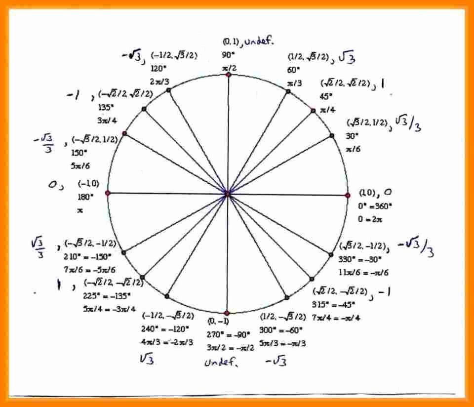 Blank Unit Circle Pdf Fresh 8 Unit Circle Template