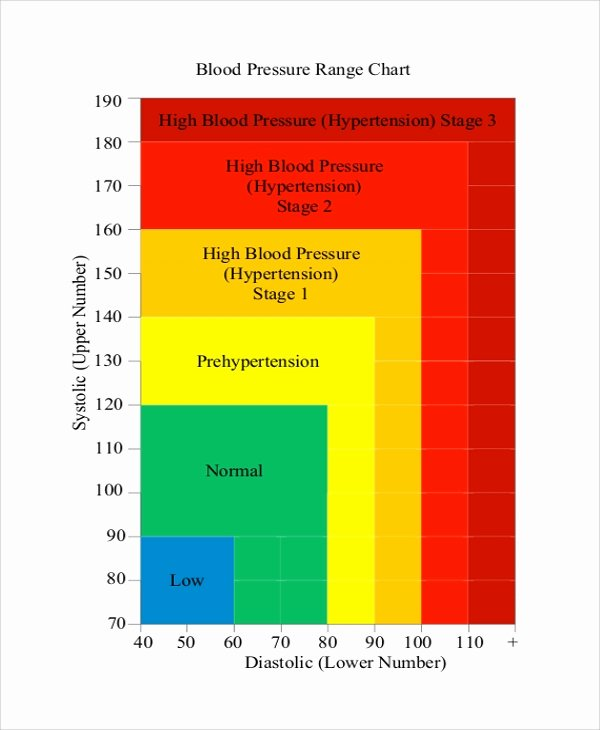 Blood Pressure Chart Pdf Best Of Sample Blood Pressure Chart 9 Examples In Pdf Word