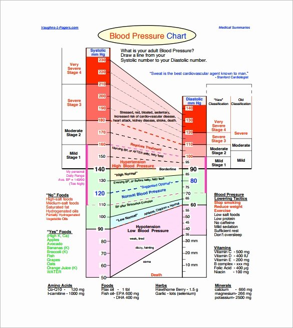 Blood Pressure Chart Pdf Elegant Sample Heart Rate Chart Template 10 Free Documents
