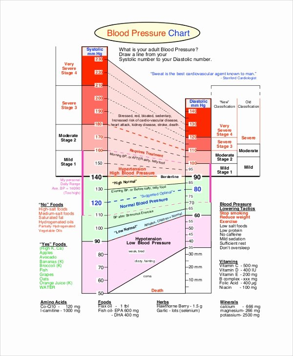 Blood Pressure Chart Pdf Fresh Sample Blood Pressure Chart 9 Examples In Pdf Word