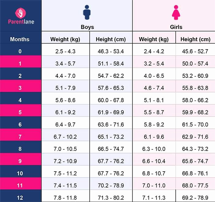 Boys Height Weight Chart Best Of Height and Weight Chart for Indian Babies 0 to 12 Months
