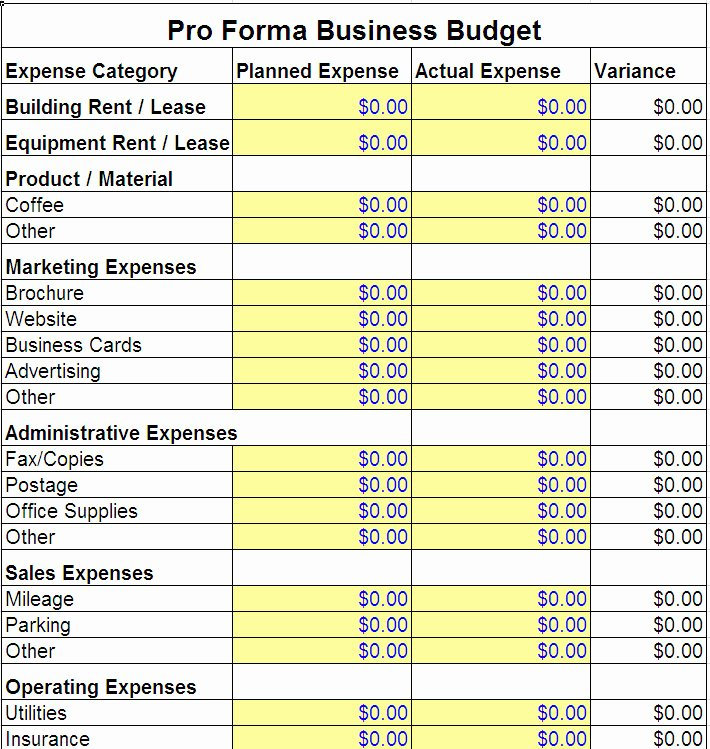 Business Budget Template Excel Lovely Pro forma Business Bud Template