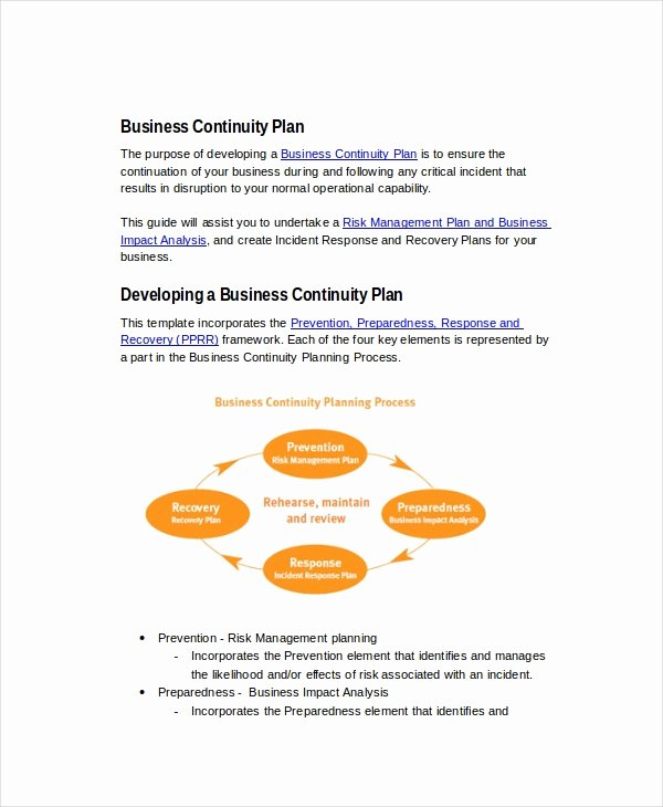 Business Continuity Plan Sample Best Of 26 Business Plans Free Sample Example format
