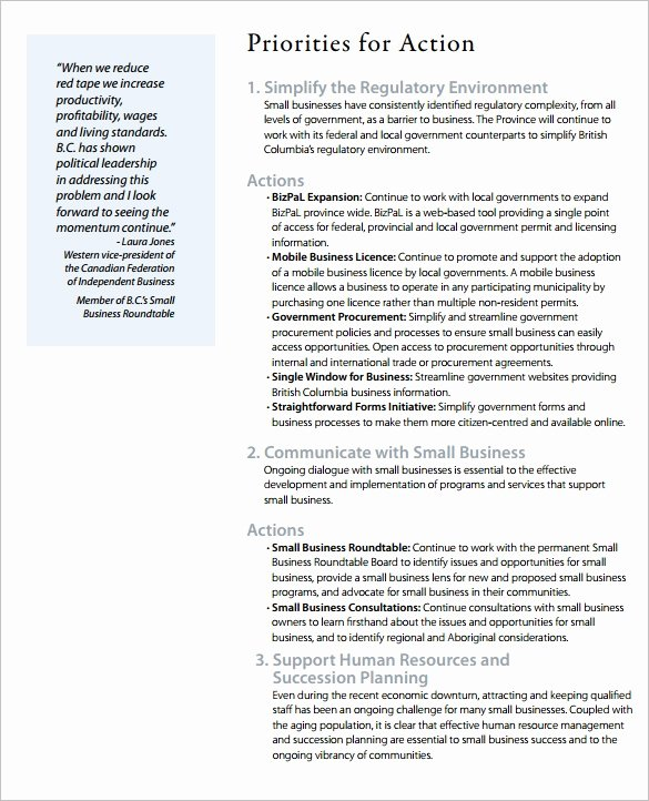 Business Development Plan Template Inspirational Business Action Plan Template 12 Free Sample Example