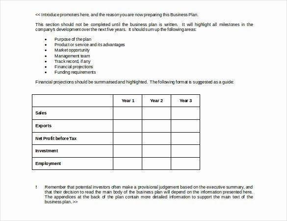 Business Development Plan Template Unique Business Strategy Template – 14 Word Pdf Ppt Documents