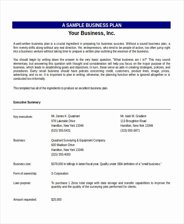 Business Plan Template Excel Lovely Excel Business Plan Template 18 Free Excel Document