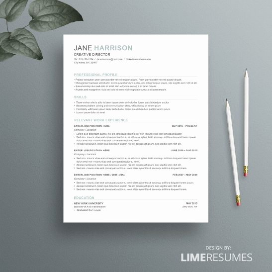 Combination Resume Template Word Inspirational How to Choose the Right Resume format Limeresumes