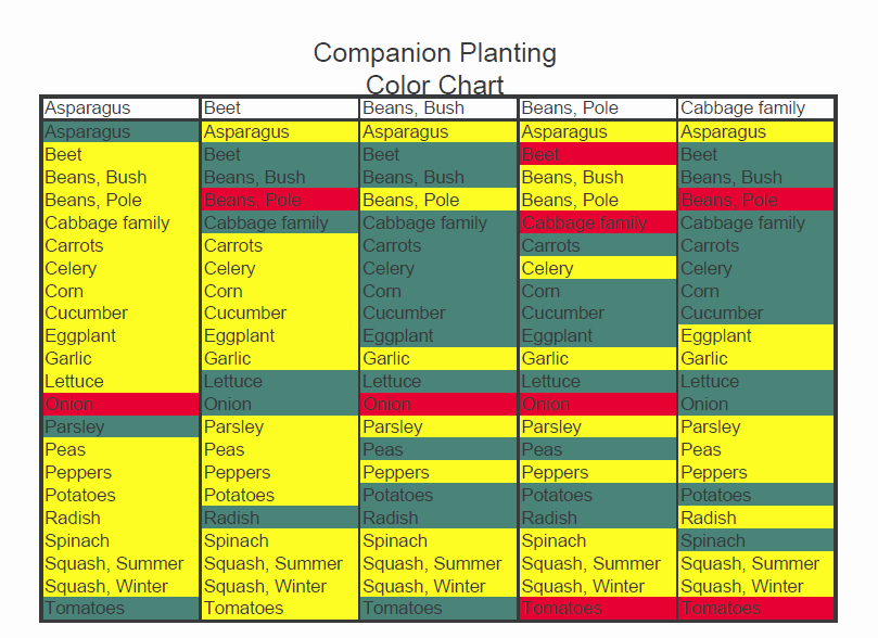 Companion Planting Chart for Vegetables Unique Panion Planting – My Square Foot Garden
