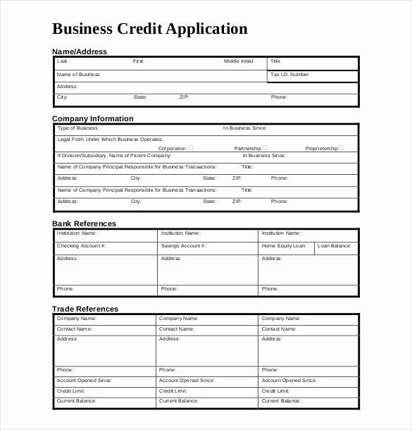 Credit Application form Pdf Lovely Credit Application Template 33 Examples In Pdf Word