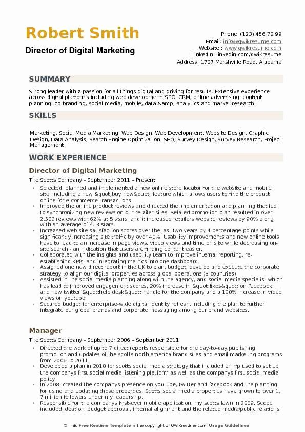 Digital Marketing Resume Sample Awesome Director Of Digital Marketing Resume Samples