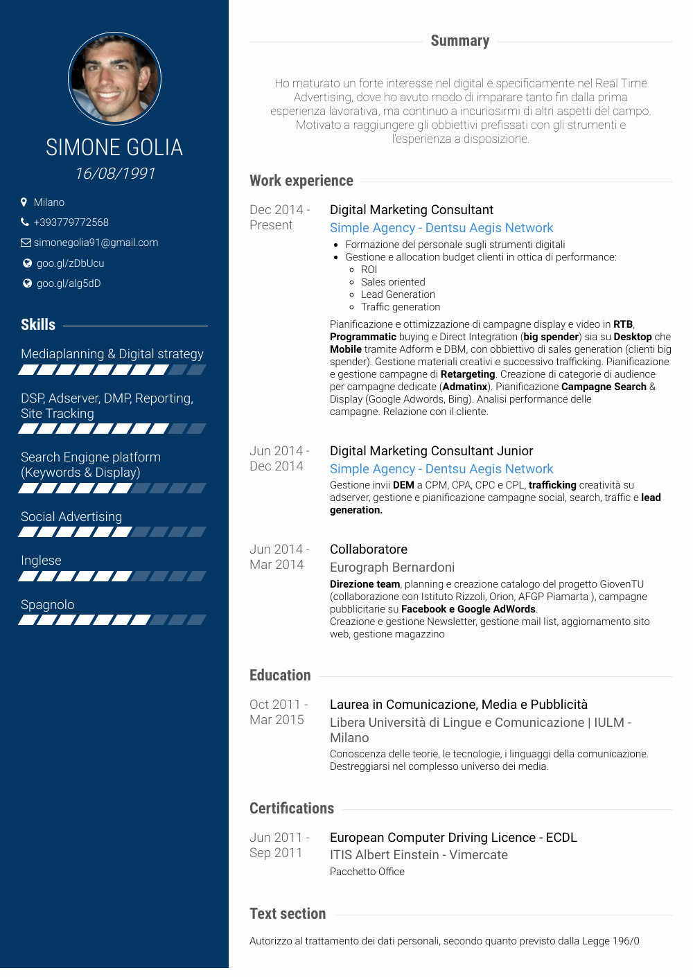 Digital Marketing Resume Sample Luxury Digital Marketing Consultant Resume Samples & Templates