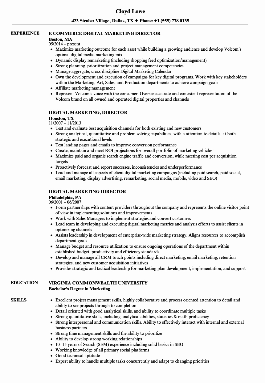 Digital Marketing Resume Sample New Digital Marketing Director Resume Samples