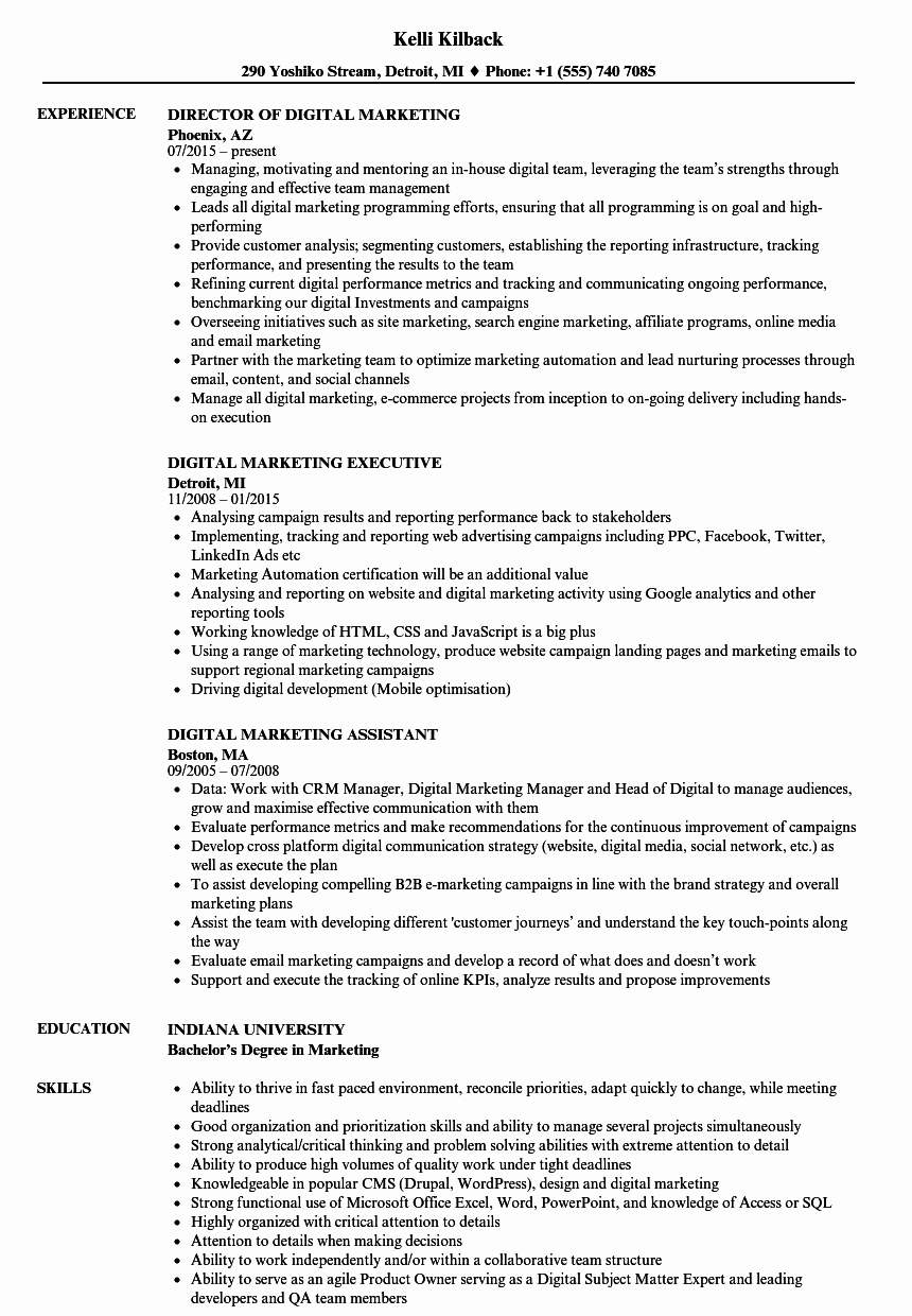 Digital Marketing Resume Sample New Digital Marketing Resume Samples