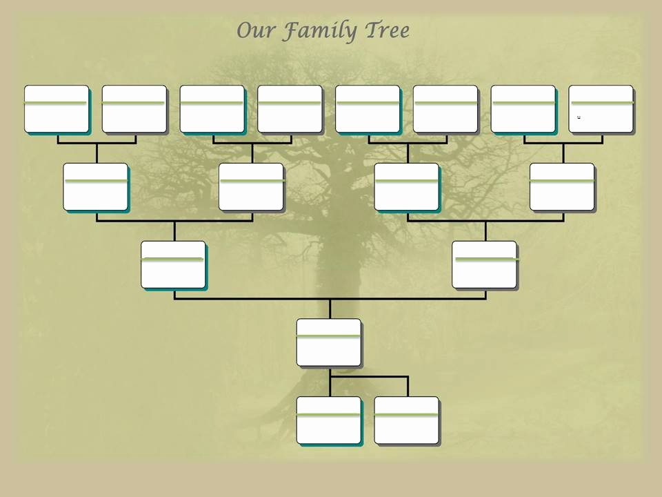 Editable Family Tree Template Awesome Family Tree Project Template – Ancestry Talks with Paul Crooks