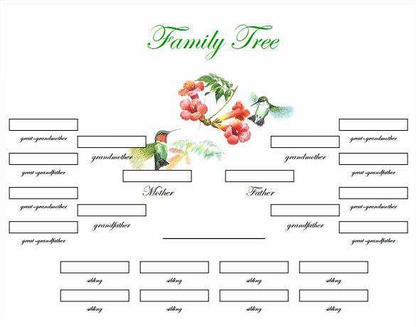 Editable Family Tree Template Fresh 29 Of Blank Family Tree Template Microsoft Word