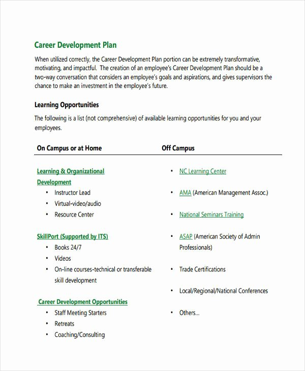 Employee Development Plan Examples Elegant 64 Development Plan Examples & Samples In Pdf