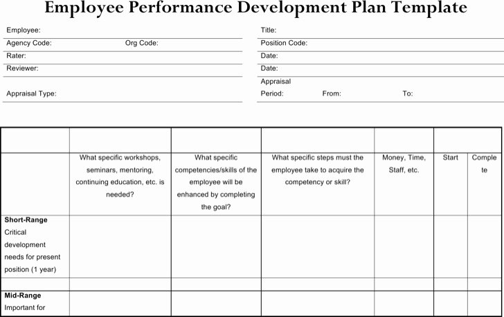 Employee Development Plans Templates Awesome Sample Performance Development Plan Templates to