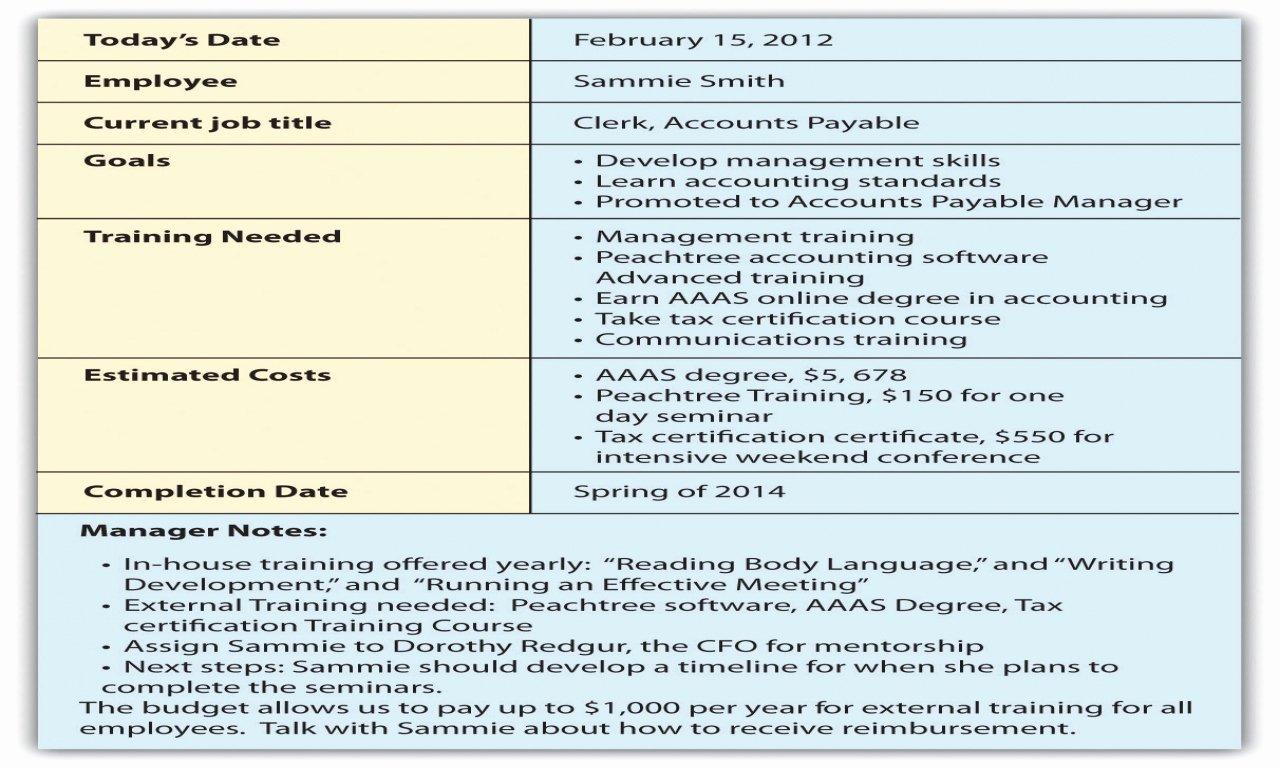 Employee Development Plans Templates Inspirational Employee Career Development Plan Template 5 Year Career