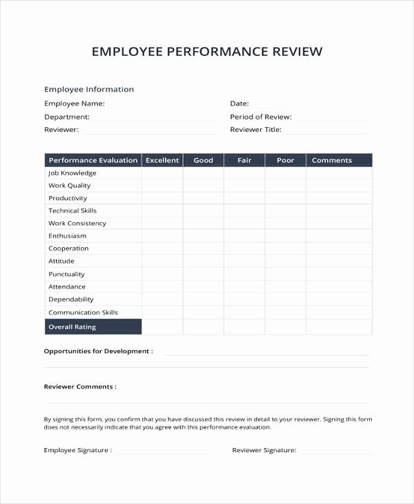 Employee Performance Evaluation Template Lovely 9 Sample Performance Review Templates Pdf Doc