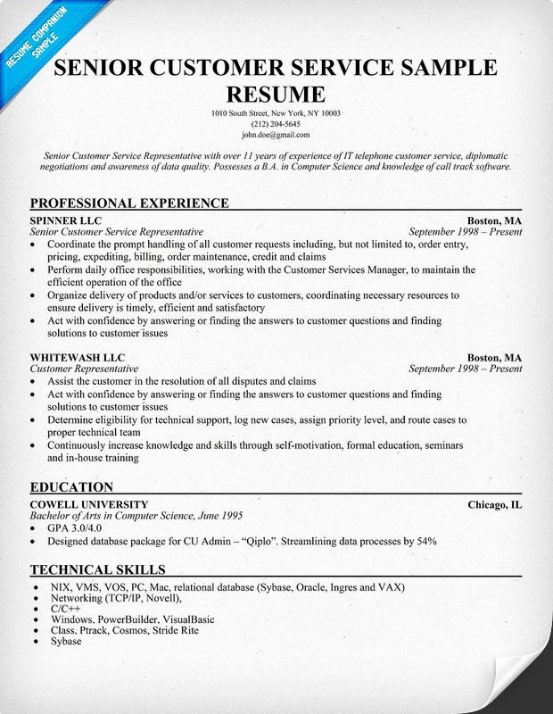 Entry Level Customer Service Resume Beautiful Senior Customer Service Resume Resume Panion