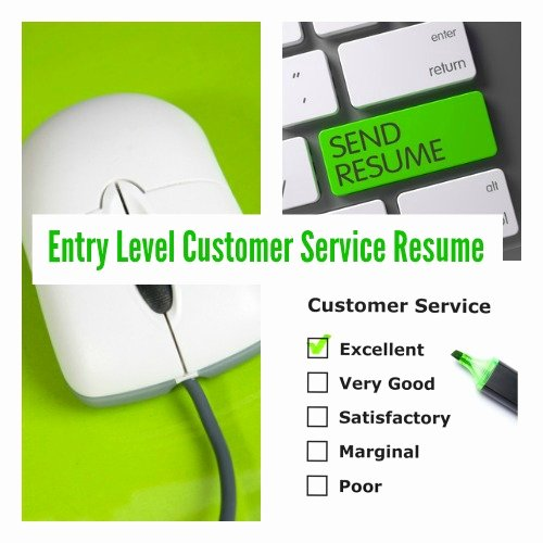 Entry Level Customer Service Resume Inspirational Entry Level Customer Service Resume