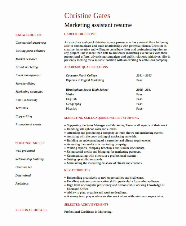 Entry Level Marketing Resume Fresh Modern Marketing Resumes 32 Free Word Pdf Documents