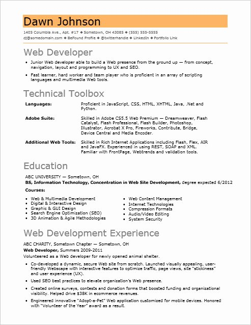 Entry Level Web Developer Resume Unique Sample Resume for An Entry Level It Developer