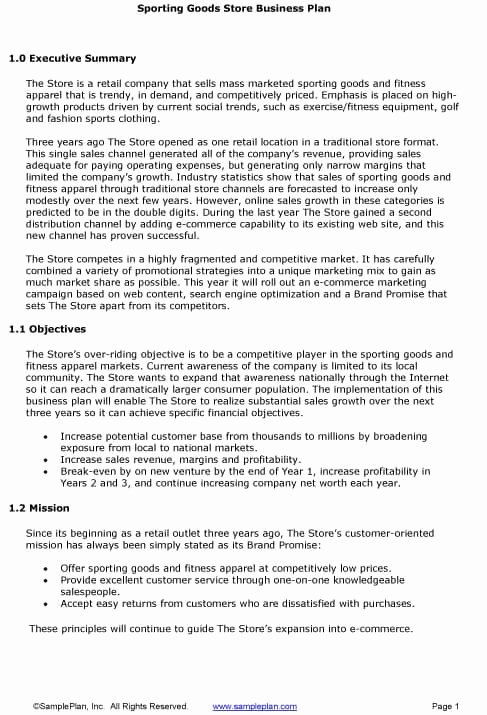 Executive Summary Sample for Proposal Awesome 5 Executive Summary Templates Excel Pdf formats